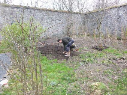 Digging the back corner - 17042015
