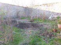 Digging the back corner 2 - 17042015