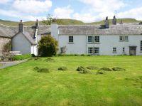 Back lawn - grass piles - 30052015