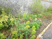 Herb border 2 - 10052015