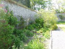Herb border 2 - 30052015