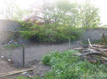 Veggie patch 2 - 23052015