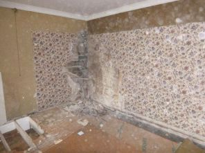 Dry rot in library - 20062015