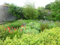 Flower garden - 20062015
