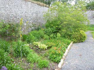 Herb border 2 - 07062015