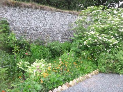 Herb border - 27062015