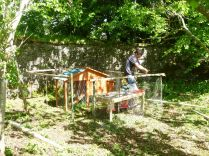 SWG - chicken house - 07062015