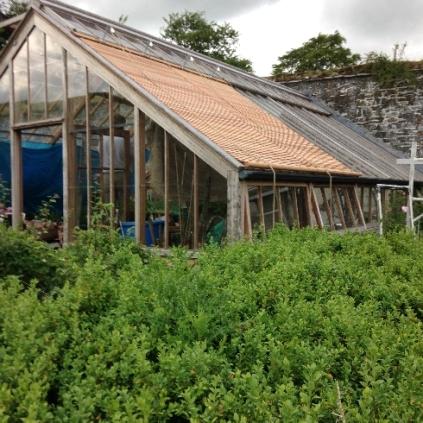 Glasshouse blinds 6 - July 2015 - SH