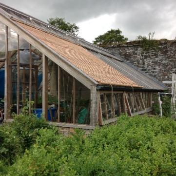 Glasshouse blinds 7 - July 2015 - SH