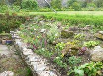 Alpine garden - 13082015