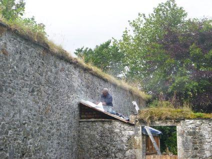 Cutting raggle on potting shed - 04082015