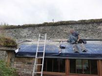 Cutting raggle on potting shed 2 - 04082015