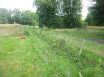 New hedge - 30082015