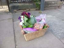Produce from garden - 30082015