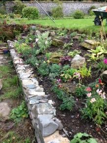 Alpine garden - 14092015 - SH