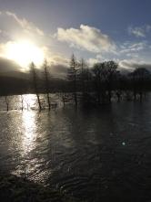 Flooding 1 - 06122015