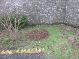 Chippings - 05022016