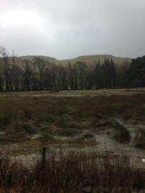 Flooding 4 - 26012016 - SH