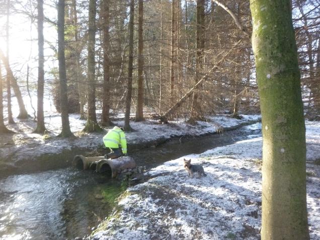 Moving bridge in stream - 17012016