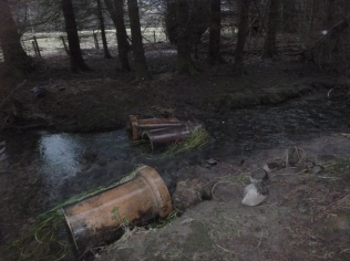 Pipes in woods - 05022016
