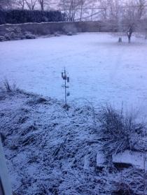 Snow 1 - 14012016 - SH