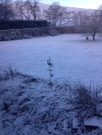 Snow 3 - 14012016 - SH