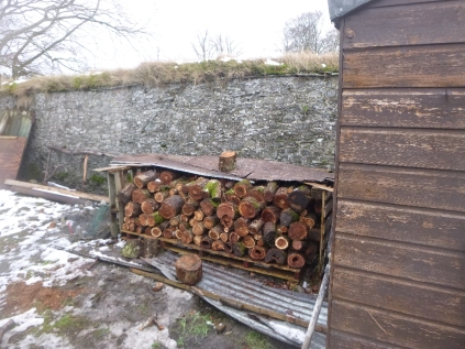 Stacked timber in SWG - 31012016