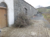 Branch pile - 21032016