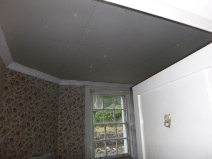 Ceiling up in Meg's study - 10032016