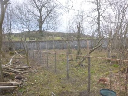 Chicken fence - SWG - 15032016