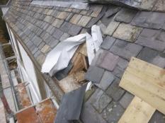 Roof works - BR2 - 15032016 1