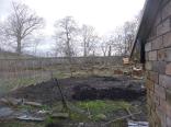 Veg patch in SWG - 05032016