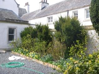 Rose Garden - 30042016