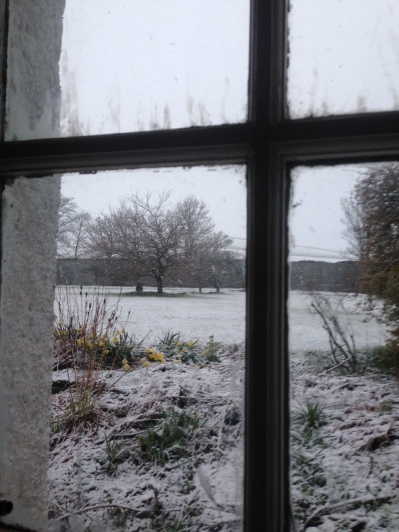 Snow 2 - 29042016 - TC