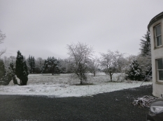 Snow in April - 10042016