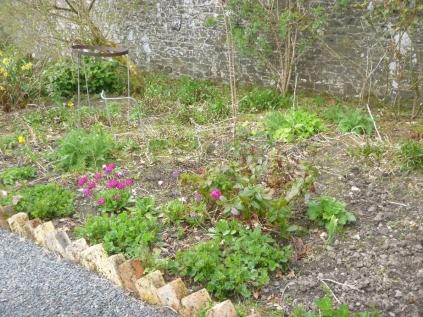 Herb border 2 - 07052016