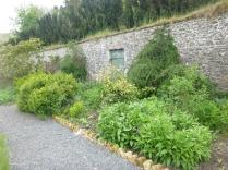 Herb border 3 - 29052016