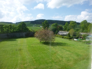 Lawn from top bedroom - 29052016
