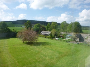 Lawn from top bedroom2 - 29052016