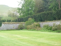 Lawn mowed - 29052016