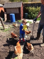 Planting spuds 6 - May 2016 - SH