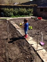 Planting spuds 7 - May 2016 - SH