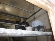 Plastering 1 - 07052016