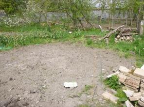 Veg patch in SWG - 17052016