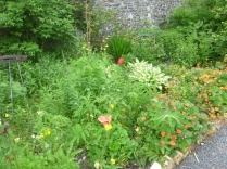 Herb border 2 - 10062016