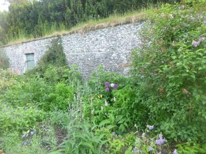 Herb border 3 - 18062016