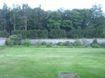 Back lawn mowed 2 - 13072016