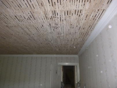 BR3 - ceiling down 3 - 02072016