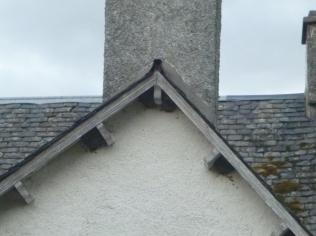 House martin nests - 13072016