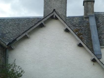 House martin nests 5 - 13072016